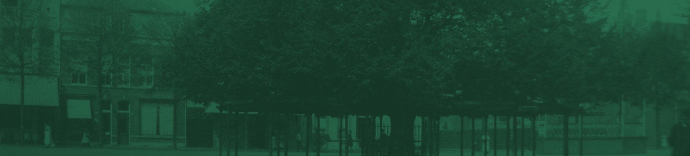 Lindeboom boom groen header 2019 alt